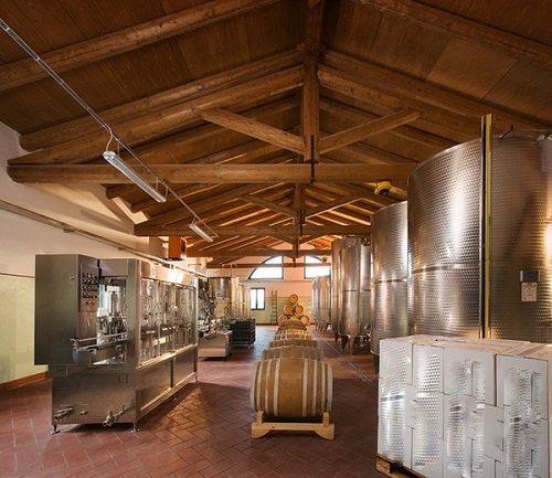 Piedmont Winerys Cellars