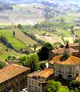 Tuscany's wine farms