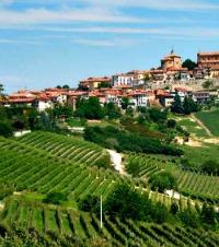 Piedmont winery stays