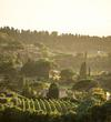 Frascati Hills  by Michelle Aschbacher
