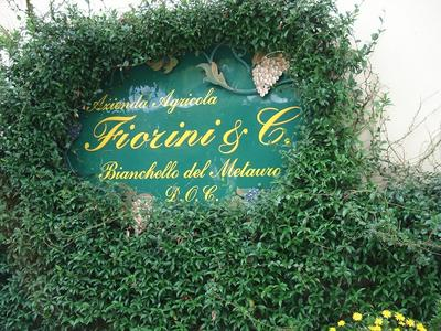 Fiorini Original Sign