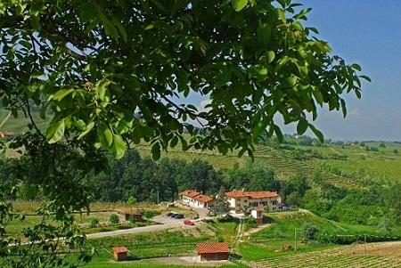 The Villa amongst the Vineyards